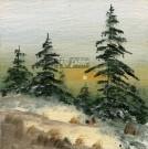 Krajinka v zime 8, 1991