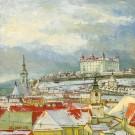 Staré Mesto a hrad v zime, 2012